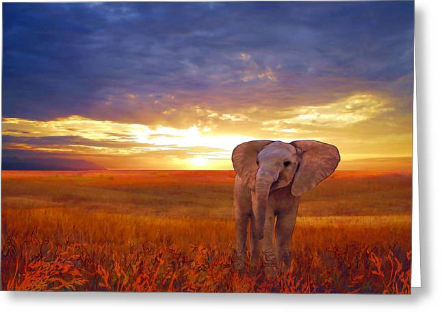 Valzart Greeting Cards - Elephant baby Greeting Card by Valerie Anne Kelly