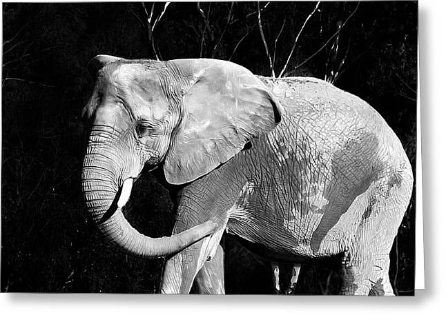 elephant Greeting Card by Camille Lopez
