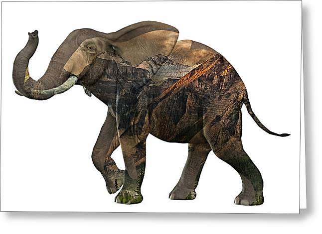 African Greeting Cards - Elephant Collection Greeting Card by Marvin Blaine