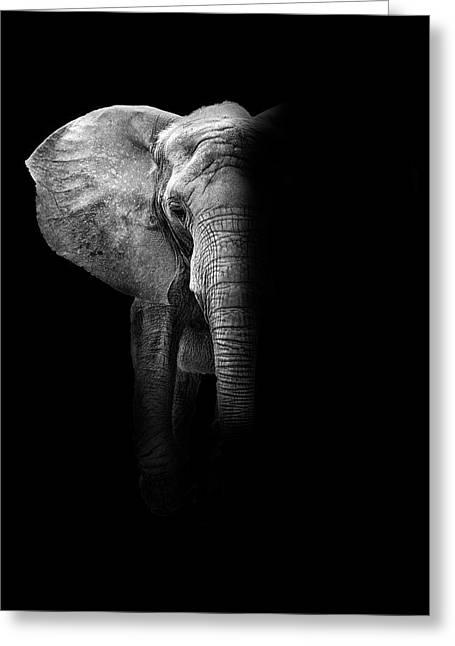 Elephant Greeting Card by Deborah Penland