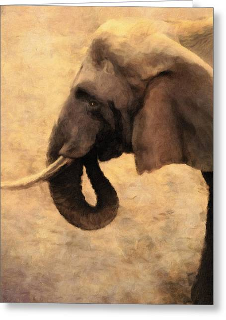 Warm Tones Greeting Cards - Elephant In The Sunlight Greeting Card by Georgiana Romanovna