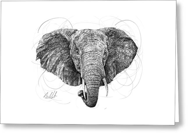 Elephant Greeting Card by Michael Volpicelli
