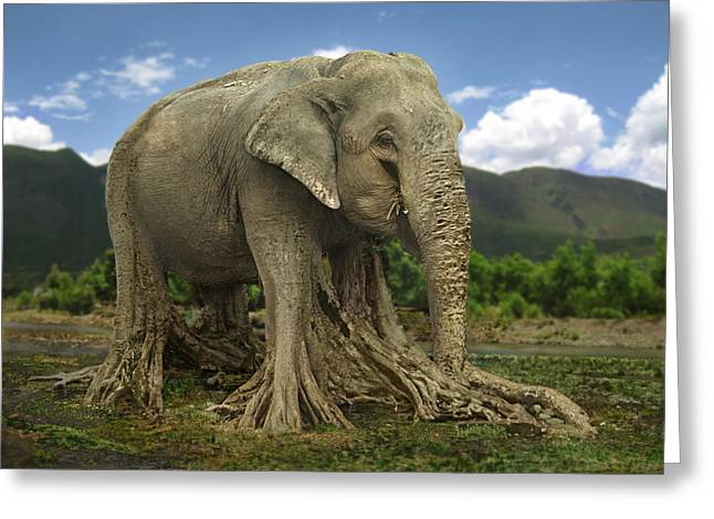 Tree Roots Greeting Cards - Elephant tree Greeting Card by Shai Biran