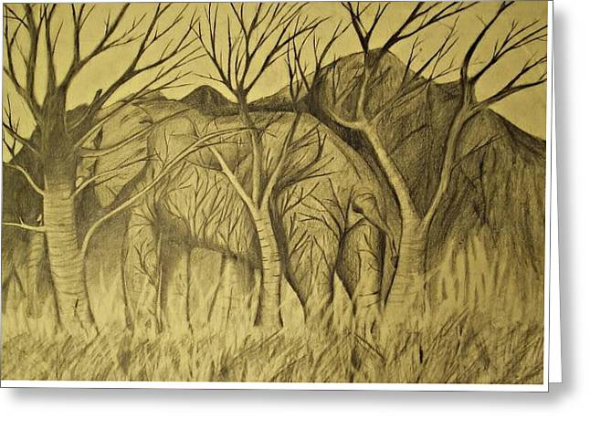 Concern Drawings Greeting Cards - Elephant in hiding Greeting Card by William Douglas