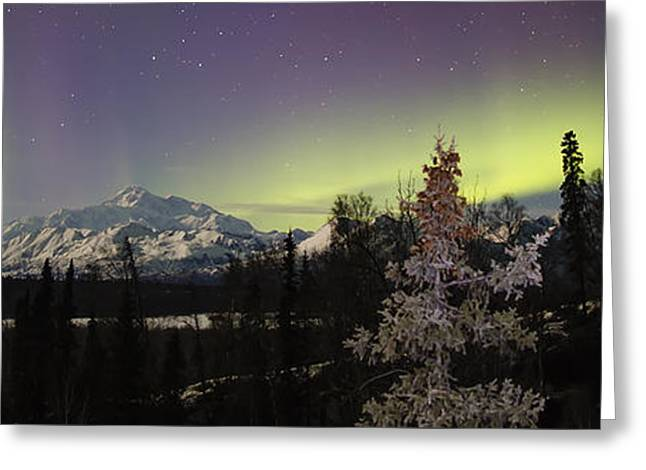 Winterscape Greeting Cards - Elevate Greeting Card by Ed Boudreau