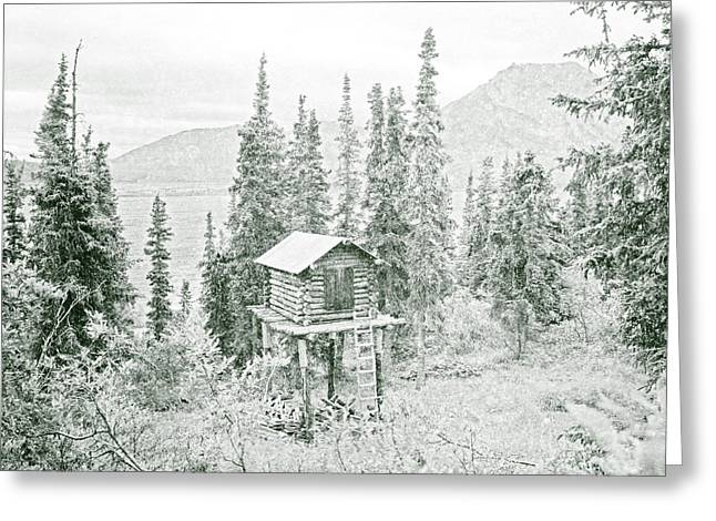 Log Cabins Greeting Cards - Elevated Alaskan Cabin Cache In Evergreens Greeting Card by John Stephens