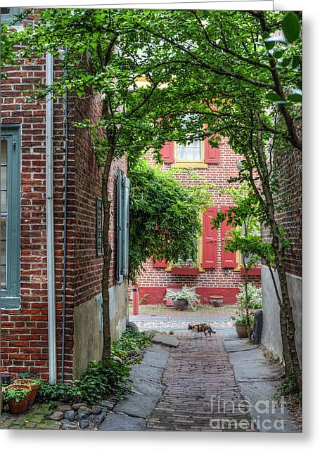 Quaker Greeting Cards - Calico Alley  Greeting Card by David  Zanzinger