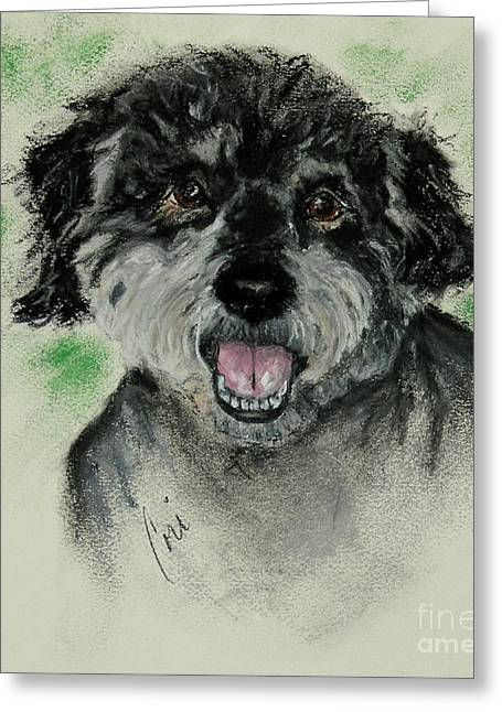 Puppies Pastels Greeting Cards - Eli Greeting Card by Cori Solomon