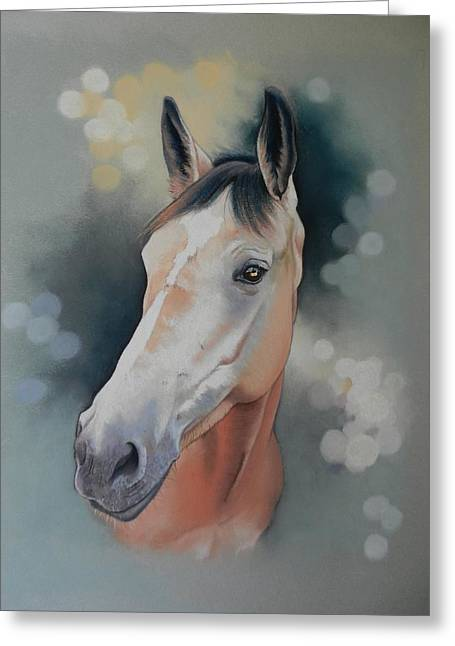 Showjumping Greeting Cards - Ellie Greeting Card by Barbara Sylvester