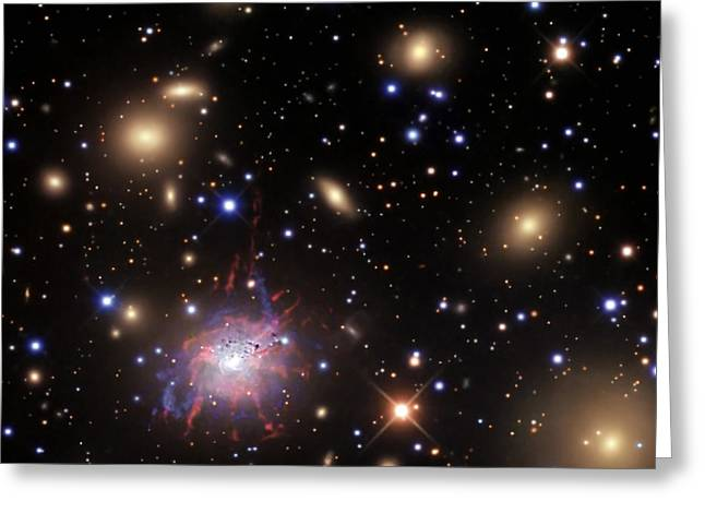 Constellations Greeting Cards - Elliptical Galaxy Ngc 1275 Greeting Card by R Jay GaBany