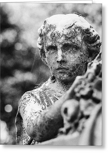 Gravesite Greeting Cards - Elmwood Cemetery - Cassie Hill BW Greeting Card by Jon Woodhams