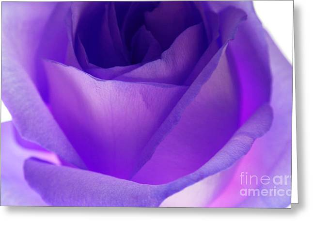 Eloquent Greeting Card by Krissy Katsimbras