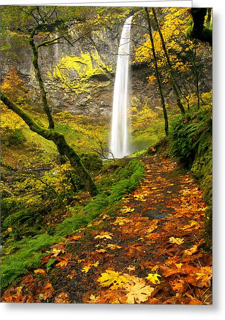 Elowah Autumn Trail Greeting Card by Mike  Dawson