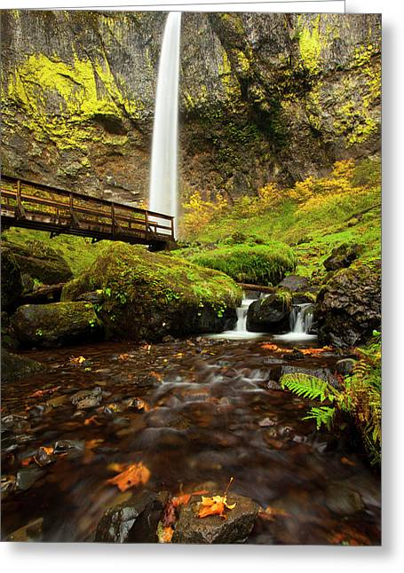 Elowah Perspective Greeting Card by Mike  Dawson