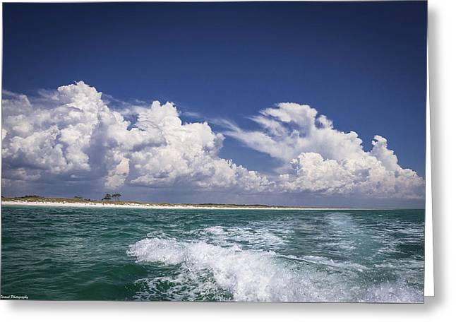 Panama City Beach Greeting Cards - Emerald Coast  Greeting Card by Debra Forand