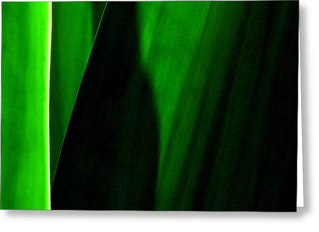 James Temple Greeting Cards - Emerald Greeting Card by James Temple