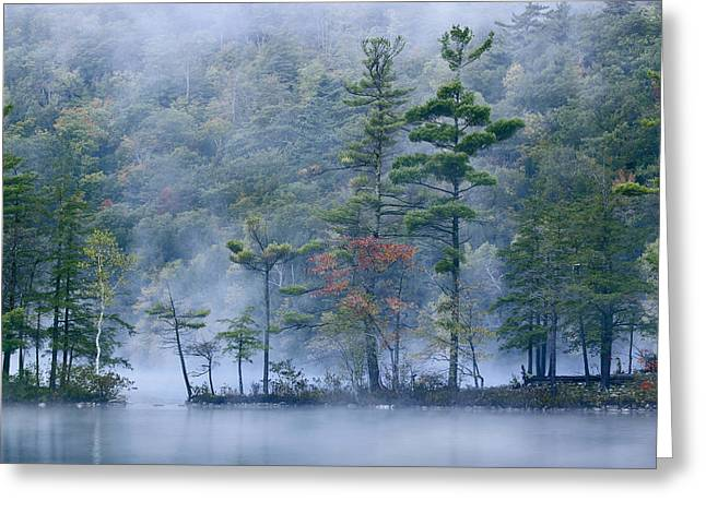 New England Color Greeting Cards - Emerald Lake In Fog Emerald Lake State Greeting Card by Tim Fitzharris
