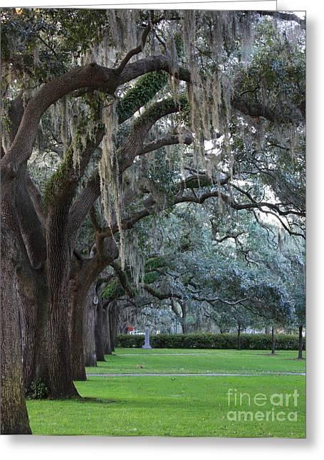 Georgian Landscape Greeting Cards - Emmet Park in Savannah Greeting Card by Carol Groenen
