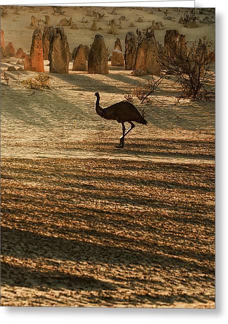Emu Terrain Greeting Card by Heather Thorning