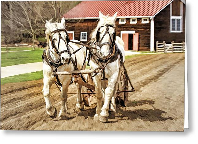 Enactment At Holmdel Park Farm Greeting Card by Geraldine Scull