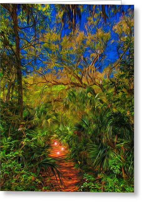 Jacksonville Greeting Cards - Enchanted Forest Greeting Card by John Bailey