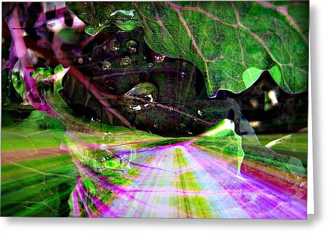 Inspired Greeting Cards - Enchanted Garden Path Greeting Card by Shirley Sirois