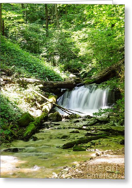 Fall Trees Greeting Cards - Enchanted Hills Waterfall Greeting Card by Jennifer White