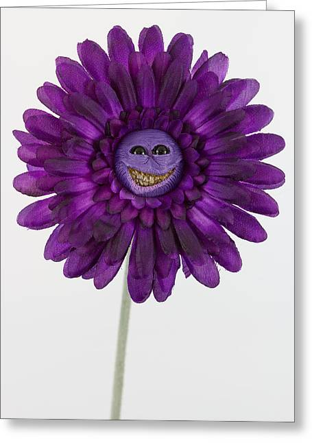 Happy Sculptures Greeting Cards - Enchanted purple happy flower Greeting Card by Voodoo Delicious