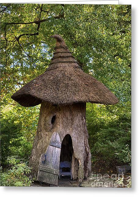 Enchanted Woods Greeting Card by John Greim