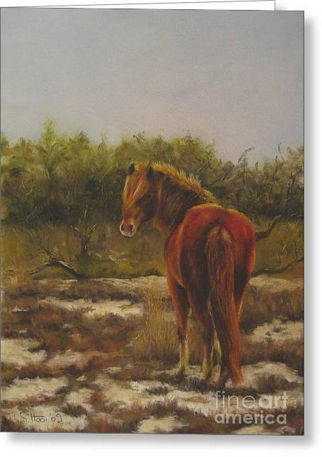 Pony Pastels Greeting Cards - Encounter in the Dunes Greeting Card by Sabina Haas