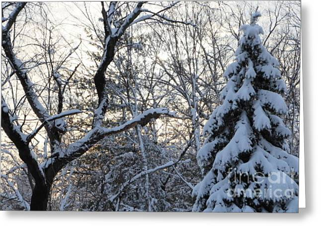 Wintry Greeting Cards - End of a Winter Day Greeting Card by Jari Hawk