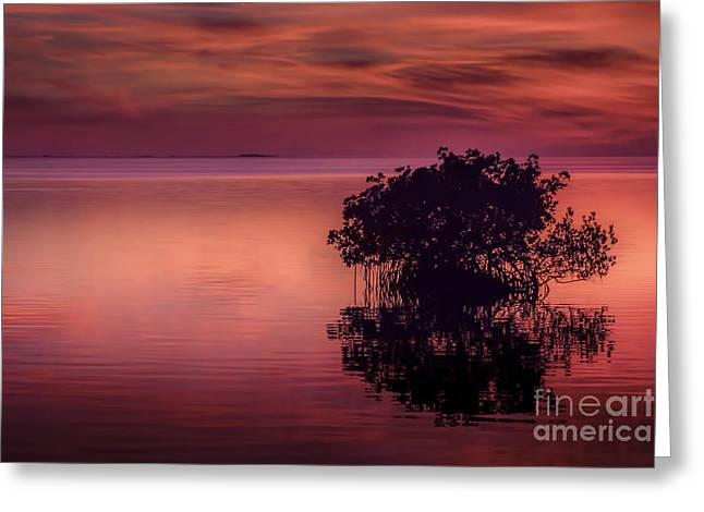 Gulf Of Mexico Scenes Greeting Cards - End Of Another Day Greeting Card by Marvin Spates