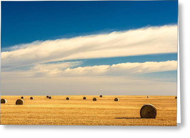 End Of Autumn Greeting Card by Todd Klassy