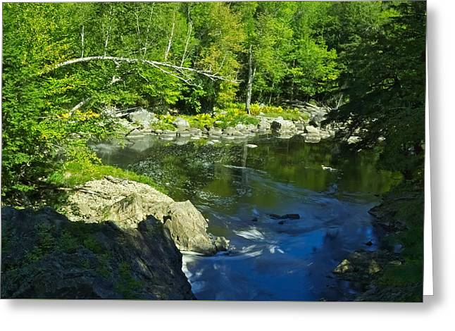 Stream Greeting Cards - End of the Fall Greeting Card by Amanda Jones