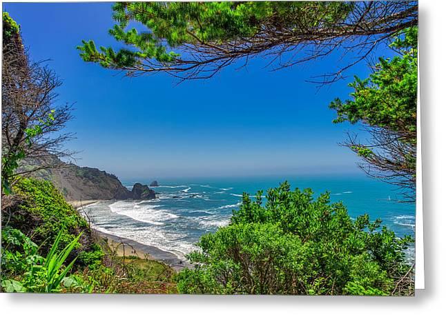 Endert's Beach Redwoods National Park Greeting Card by Scott McGuire