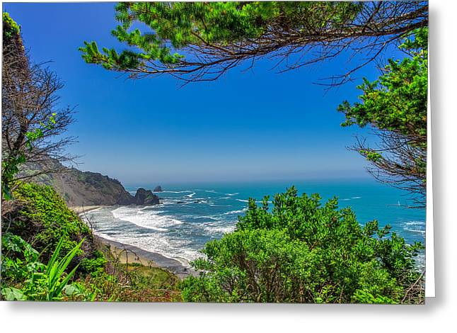 S. California Greeting Cards - Enderts Beach Redwoods National Park Greeting Card by Scott McGuire