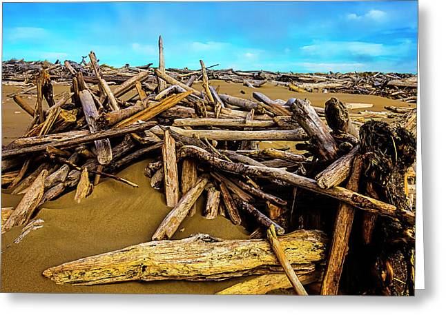 Endless Piles Of Driftwood Greeting Card by Garry Gay
