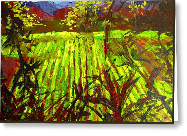 Endless Vineyards Greeting Card by Patricia Awapara