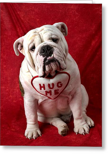 Cuddly Photographs Greeting Cards - English Bulldog Greeting Card by Garry Gay