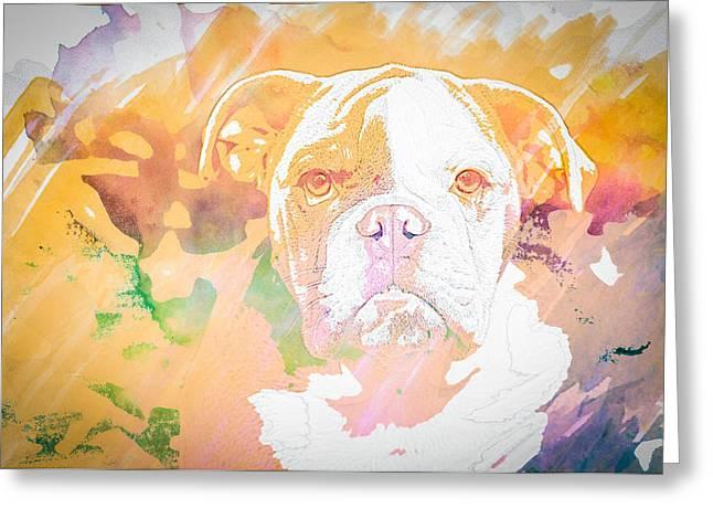 Puppies Photographs Greeting Cards - English Bulldog WC Greeting Card by Joye Ardyn Durham