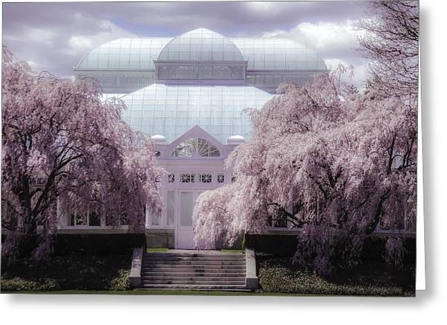 Enid Greeting Cards - Enid Haupt Conservatory New York Botanical Garden Greeting Card by Julie Palencia