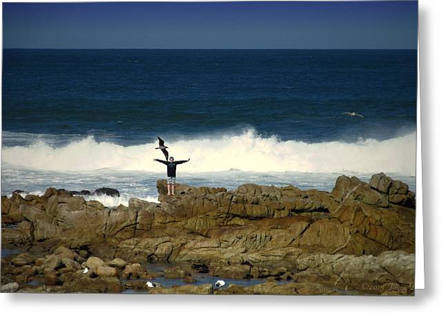 Beach Photography Greeting Cards - Enjoying The Day At Asilomar Greeting Card by Joyce Dickens