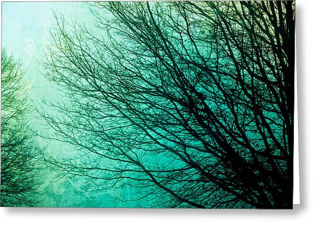 Duotone Greeting Cards - Entangled Greeting Card by Colleen Kammerer