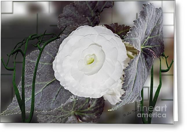 Les Fleurs Greeting Cards - Entangled Flower Greeting Card by Linda Troski