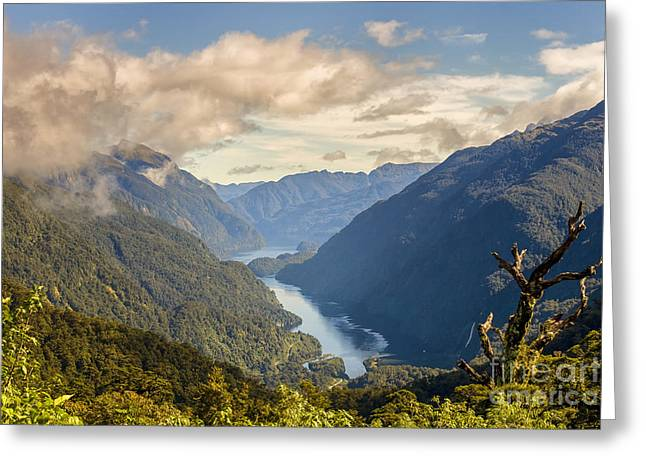 Doubtful Greeting Cards - Entrance of Doubtful Sound Greeting Card by Patricia Hofmeester