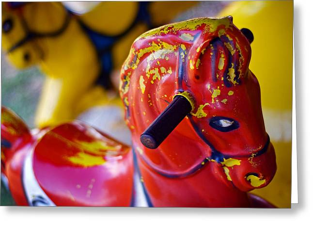 Horse Photography Greeting Cards - Envy Greeting Card by Skip Hunt