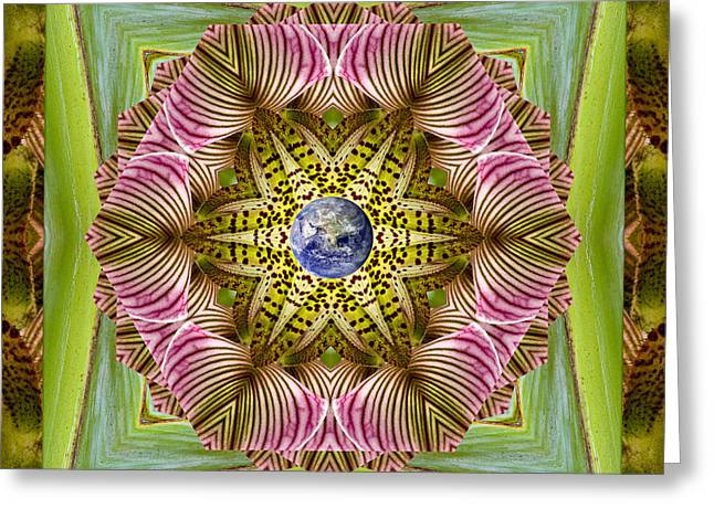 Garden Mandala Greeting Cards - EpiCenter Greeting Card by Bell And Todd