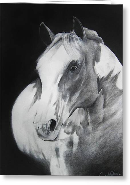 Carrie Glenn Greeting Cards - Equestrian Beauty Greeting Card by Carrie Jackson