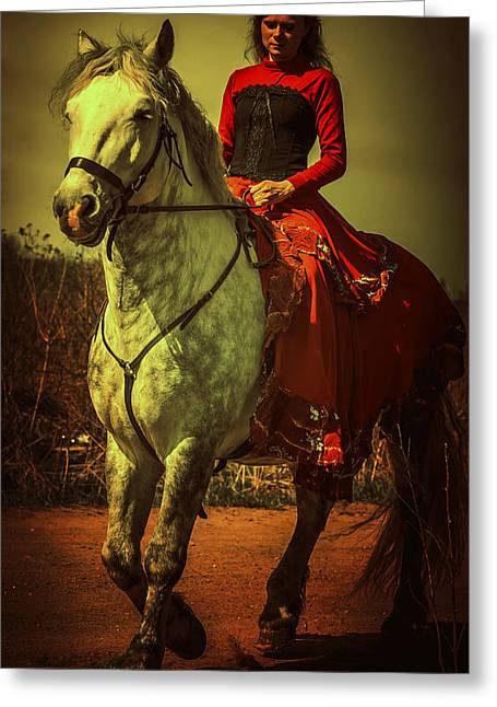 Beautiful Horse Photography Greeting Cards - Equestrienne. Moon Light Greeting Card by Jenny Rainbow