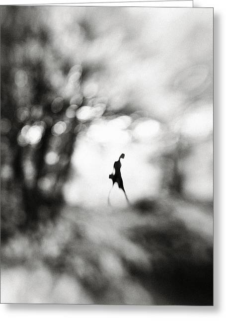 Blur Greeting Cards - Equinox Greeting Card by Hengki Lee